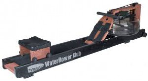 Healthy-image-water rower