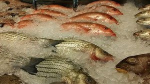 Healthy-image-fish-market